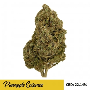 Susz CBD Pineapple Express 22% CBD 1gr