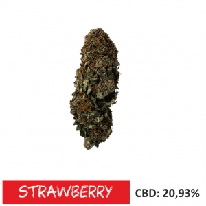 Susz CBD STRAWBERRY 20% CBD 1g